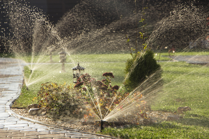 Common Springtime Plumbing Issues To Watch Out For