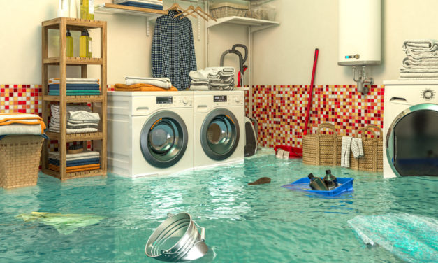Top 6 Things To Do When You Have a Flood In Your Home